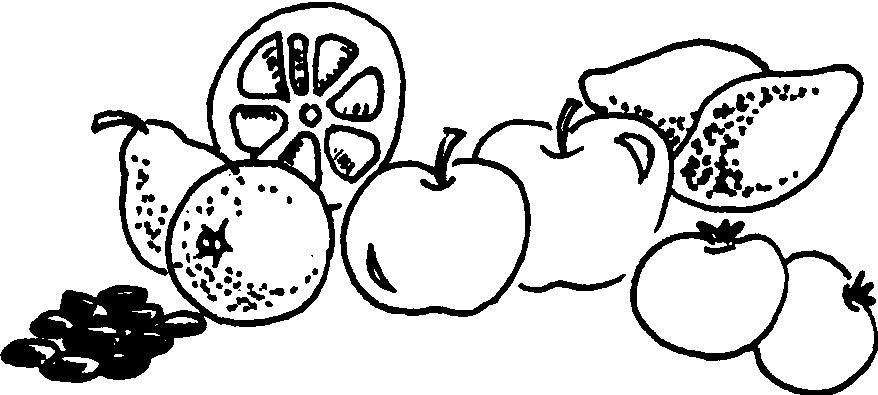 水果生长图片步骤图简笔画