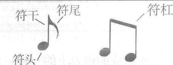 指乐谱中用以表示音的高低和长短的符号。五线谱中的音符是用以表示音的长短的符号,由三部分构成,即符头、符干、符尾。 空心或实心的椭圆形标记为符头;连接在符头左下方或右上方的垂直短线为符干,连接在符干另一端、从右侧朝向符头的短曲线为符尾。 当若干音符连成
